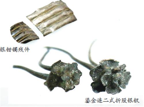 """洞头发现的南宋流通货币银铤为""""海上丝绸之路""""重要见证物"""