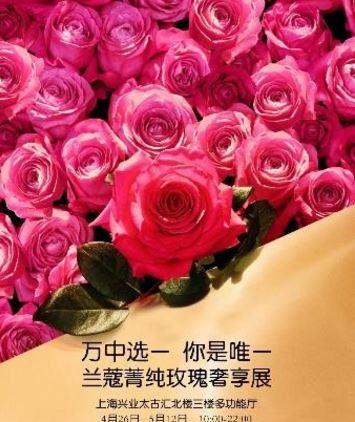 万中选一 你是唯一 LANCÔME兰蔻菁纯玫瑰奢享展