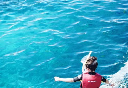 世界最大最长的珊瑚礁群