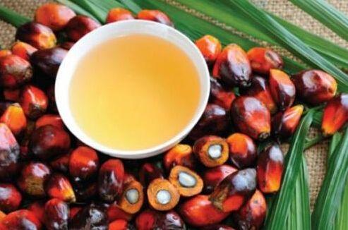 棕榈油价格上行的动力是什么及何时出现