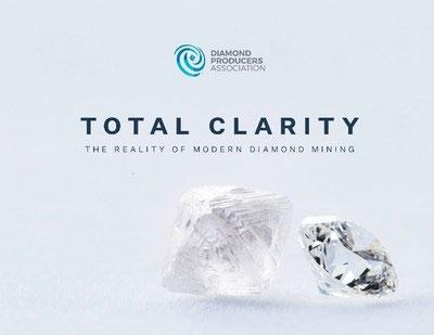 《大型钻石开采企业的社会经济和环境影响》报告发布
