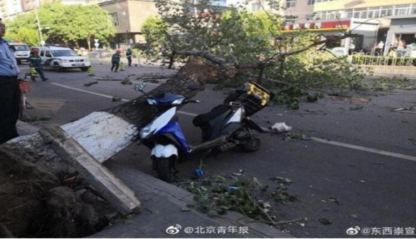北京大风致4人被砸身亡 包括一名外卖小哥