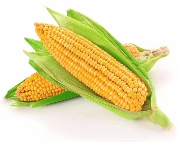 农产品暴涨玉米入牛市