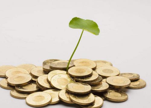 外汇盈利 从何而来?