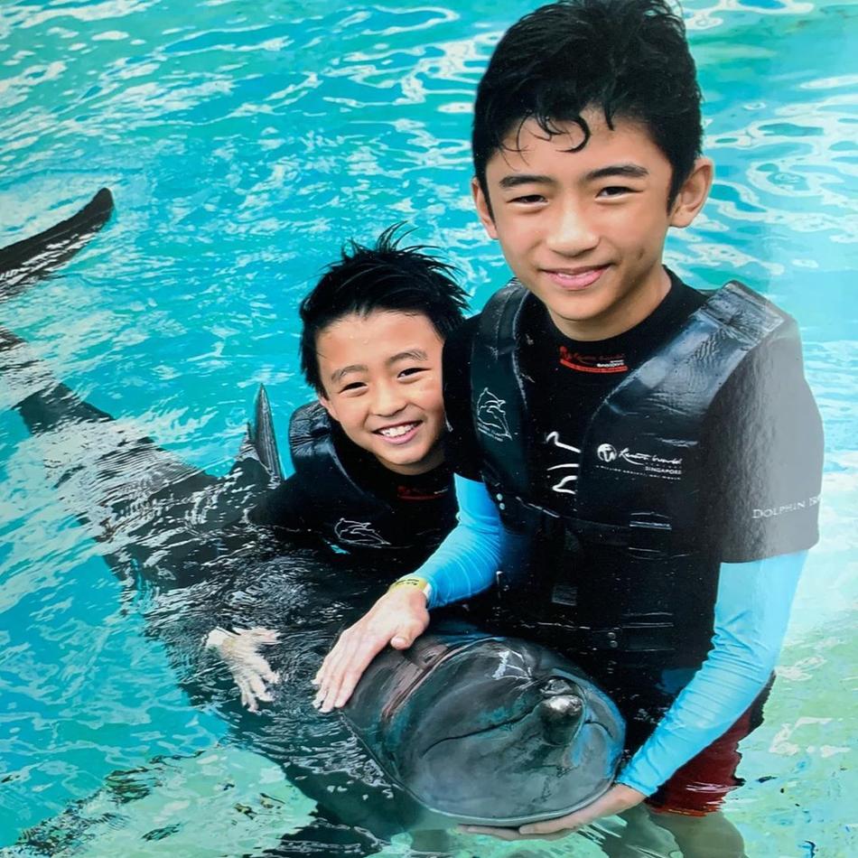 张柏芝儿子海豚合照