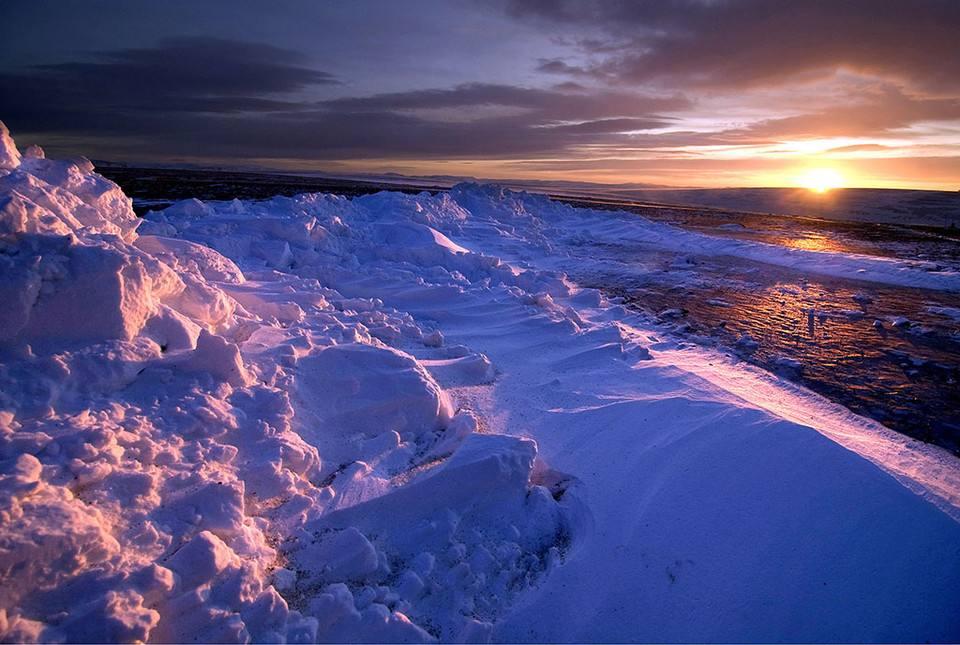 北极圈高温创纪录 推动海冰融化继而影响社区经济和野生动物生存