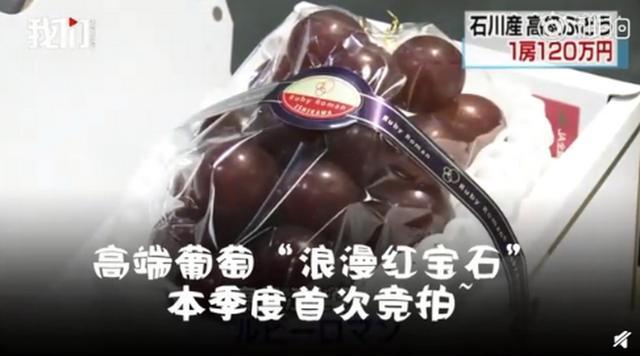 惊!一串葡萄拍出120万日元 约7.6万元人民币的价格