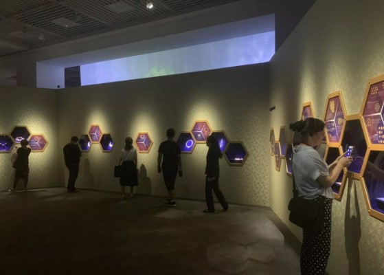 """""""金色阿富汗——古代文明的十字路口""""展在南京举行"""