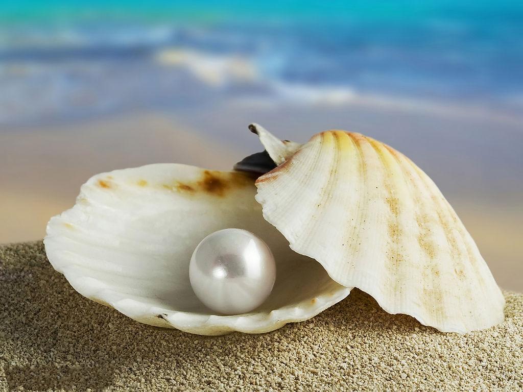 珍珠鑒定方法