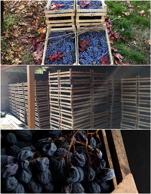 意大利东北酒王 阿玛罗尼是如何酿成的?