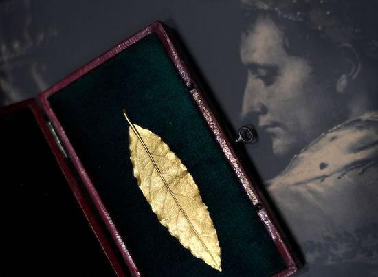 一枚金叶子的出现让中国公众再读拿破仑