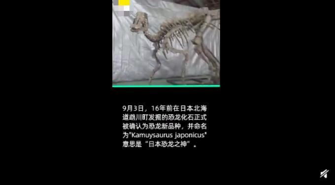 日本确认恐龙新物种 团队将新物种起名为日本龙神