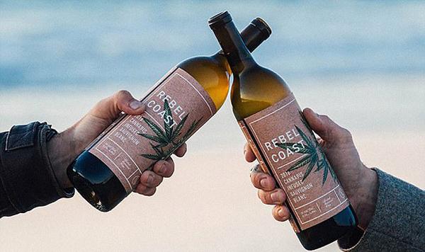 位于美国加利福尼亚州北部索诺玛县的Rebel Coast酒庄发售一款白葡萄酒
