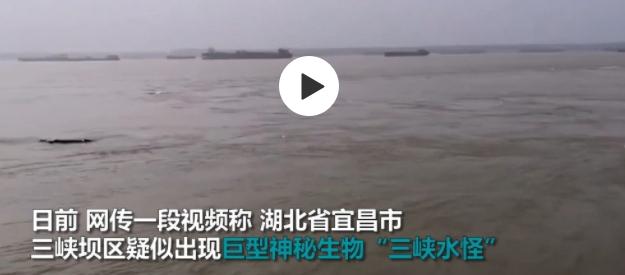 三峡水怪多角度视频 市民手持鱼竿试图钓起