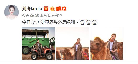 刘涛沙漠骑骆驼 风衣配长靴潇洒干练