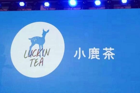 小鹿茶开业在即 原来这么多人都加盟了!