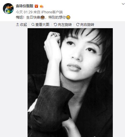 袁咏仪庆梅艳芳冥诞 曾多次发文悼念