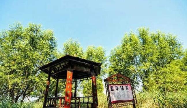 """滕州微山湖湿地红荷景区获评""""中国最佳红色文化体验旅游目的地"""""""