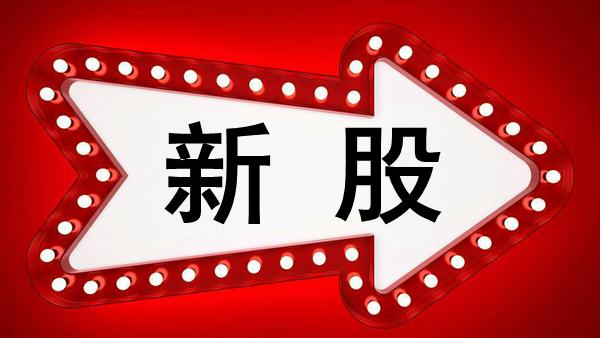 今日新股申购最新消息(2019年10月15日)