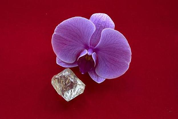 Alrosa公司发现了一个重达232克拉的粗钻