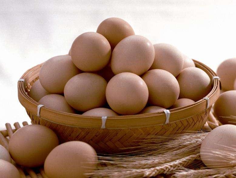 分析师:明年上半年鸡蛋行情仍将较为乐观