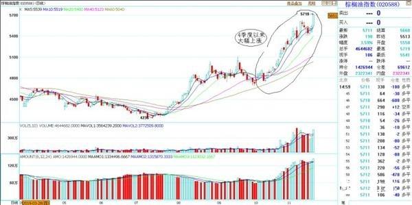 连续多日价格上涨 棕榈油市场究竟发生了什么?