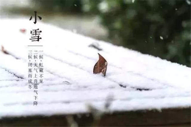 今日小雪 飞雪如花落岁岁又年年
