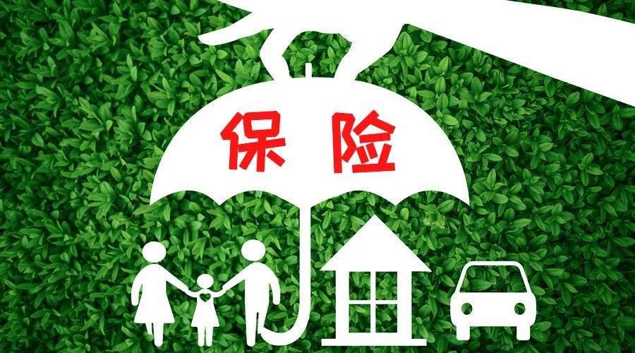 山西:从2020年起在全省范围内开展政策性商品林保险