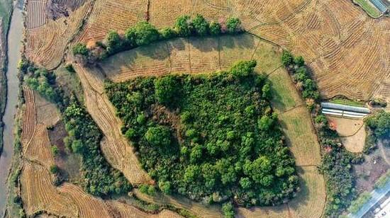 江西发现一处史前环壕遗址——盆形地遗址 距今5000年左右