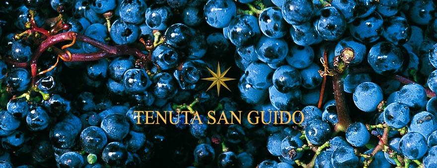 意大利顶级葡萄酒的差异