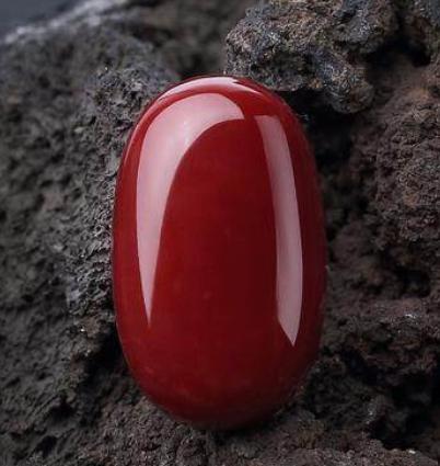 珍贵的红珊瑚都能加工制作成哪些类别的饰品呢?