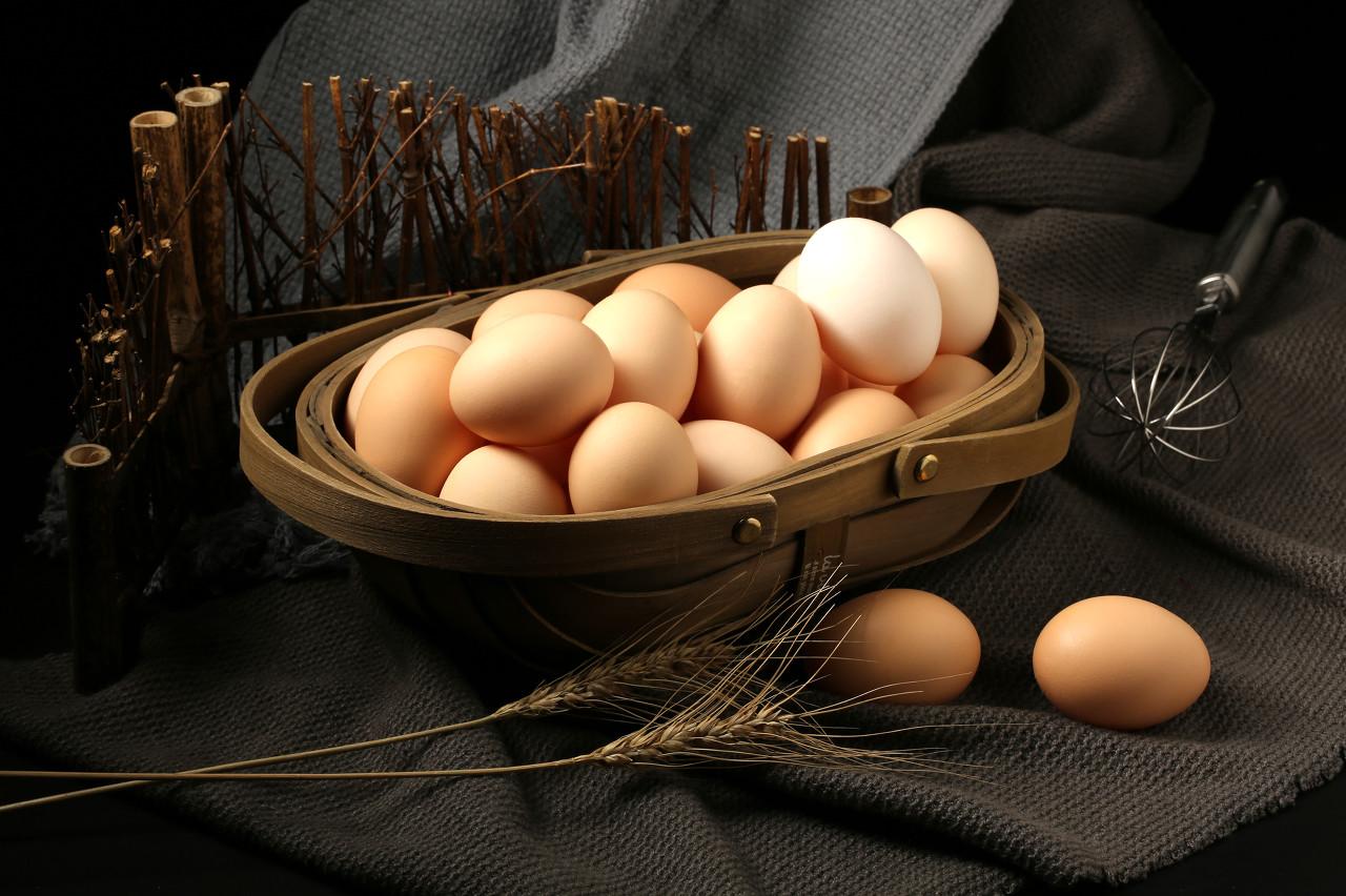 今年鸡蛋行情不好 济宁鸡蛋价格持续下跌