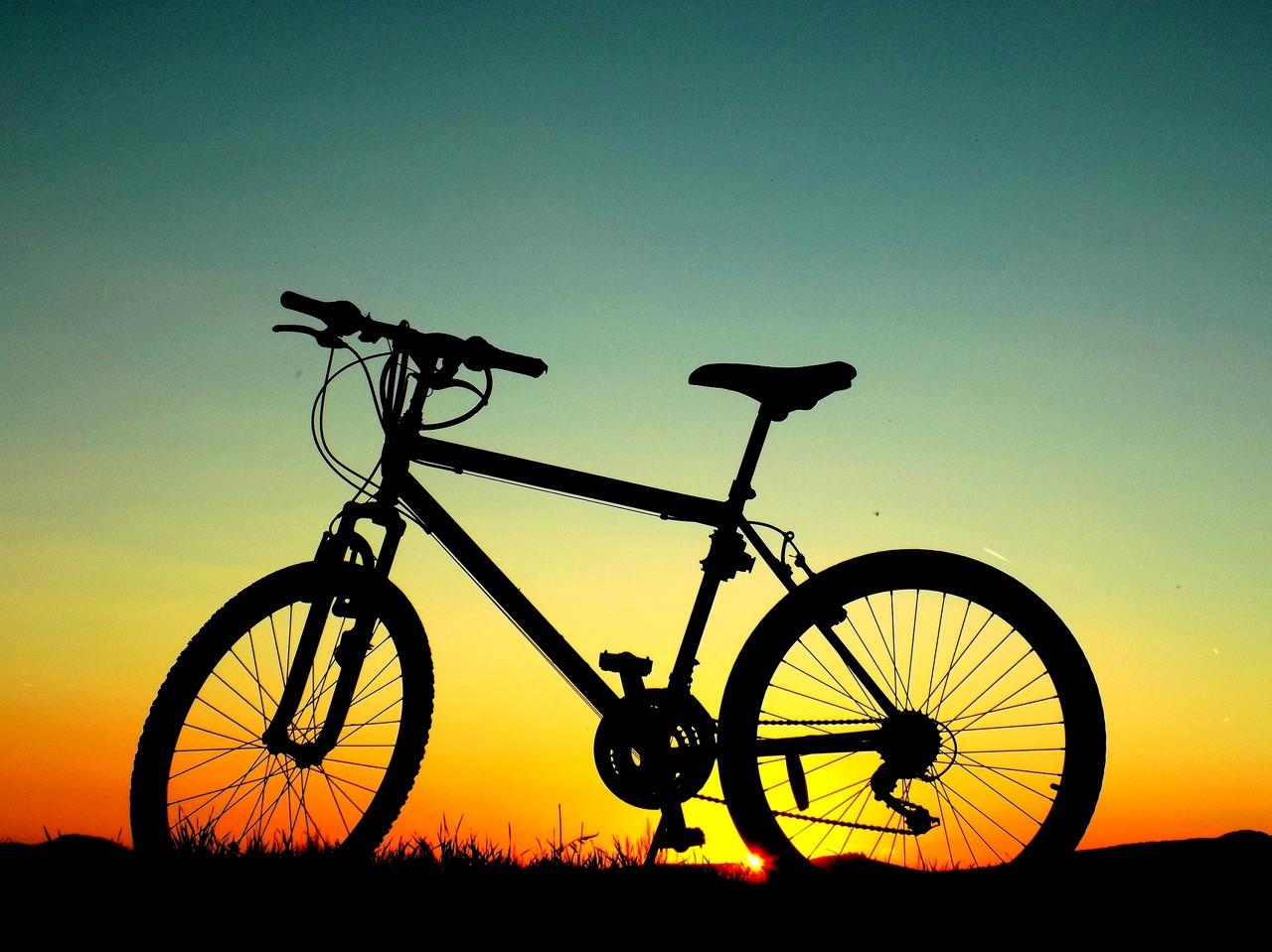 中国自行车风靡全球 自行车热能否持续