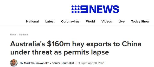 """再添""""伤疤""""!35万吨干草被中国搁置 澳农民:我们已经伤痕累累!"""