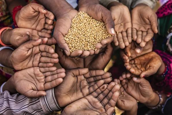 1.55亿人在挨饿 55个国家或地区遭遇粮食危机!倒牛奶打投必须治!