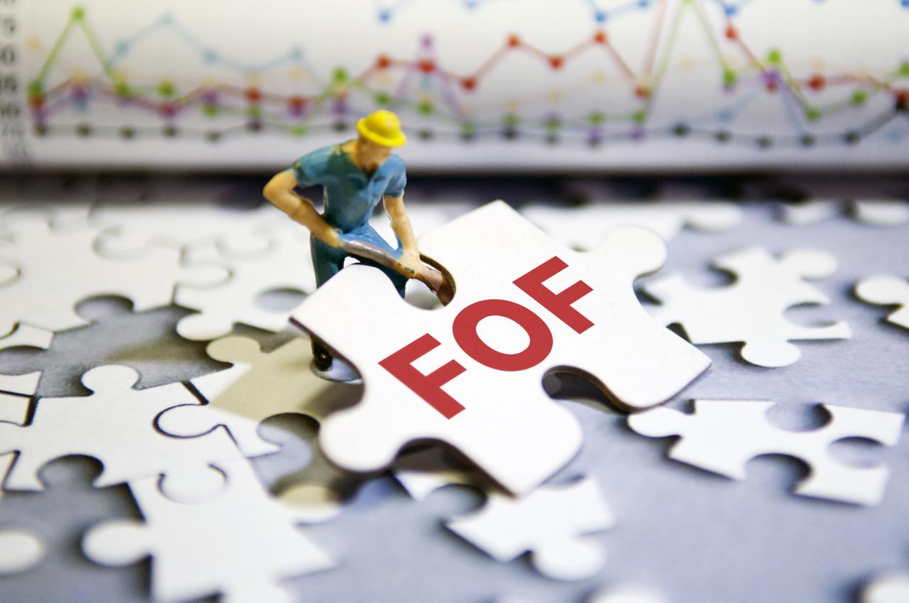FOF基金有哪些优势