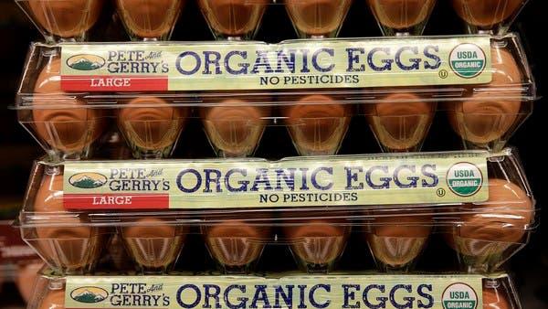 """自讨苦吃!美国""""挑事""""印度致有机鸡蛋价格飞涨 或加剧食品通胀!"""