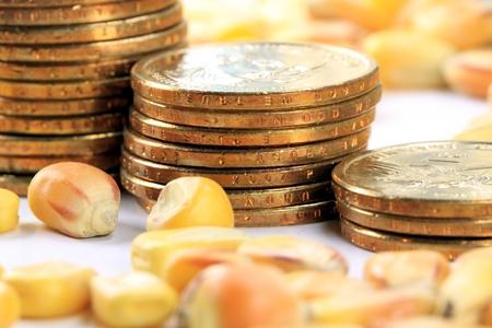 需求向好 玉米期价小幅上涨
