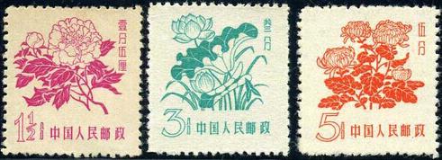 普10花卉