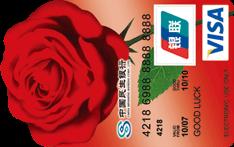 民生女人花VISA异型卡(银联+VISA)