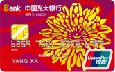 光大银行阳光信用卡银联普卡(银联,人民币,普卡)