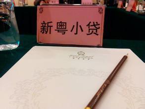 广州市增城新粤小额贷款有限公司