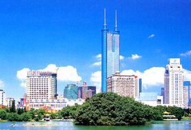 深圳人口多少_深圳人口2021总人数口是多少2021年深圳有多少人口