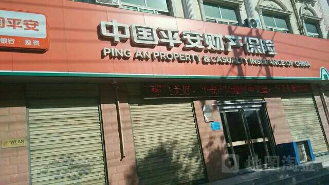 平安财险(漯河中心支公司)