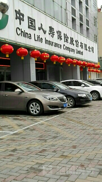 中国人寿(亳州客户服务中心)