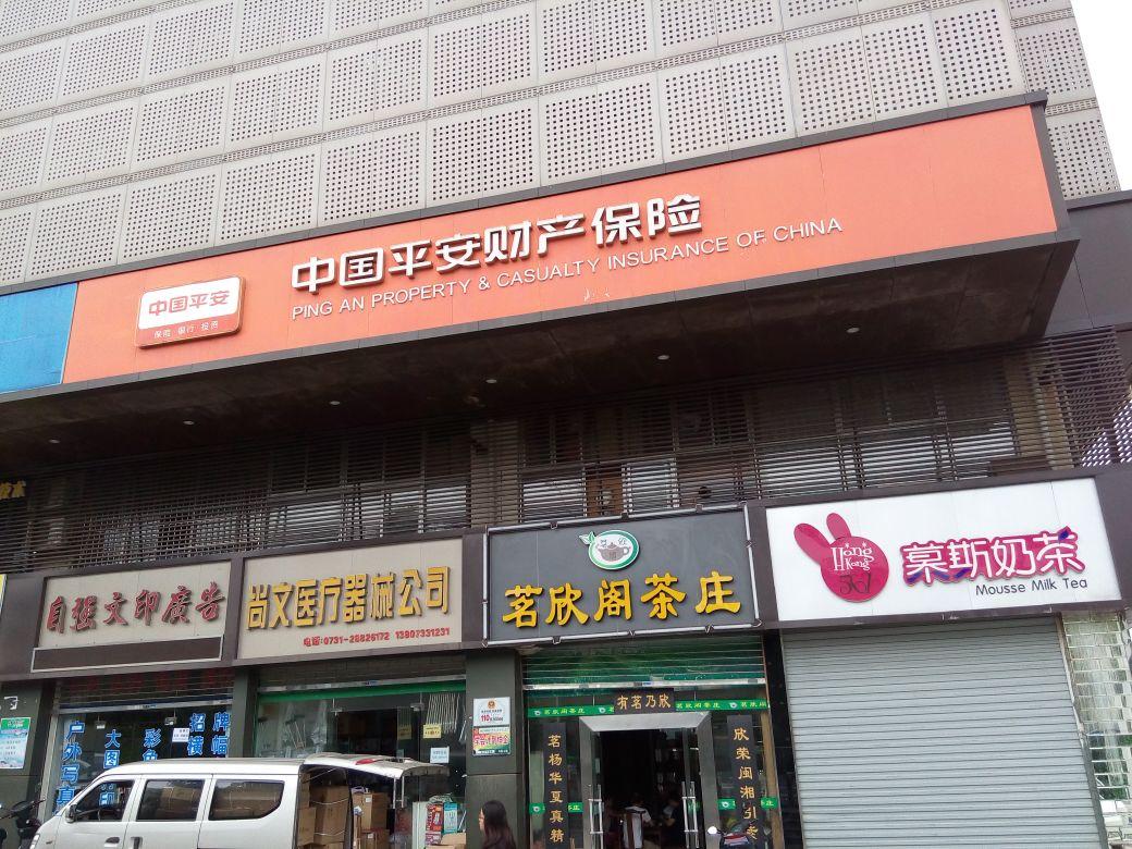 平安财险(株洲市中心支公司)