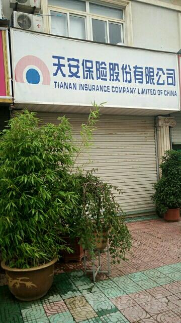 天安保险(芜湖县支公司)