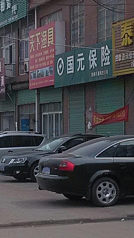 国元保险(淮南市潘集支公司)