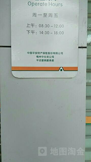 平安财险(平远支公司)