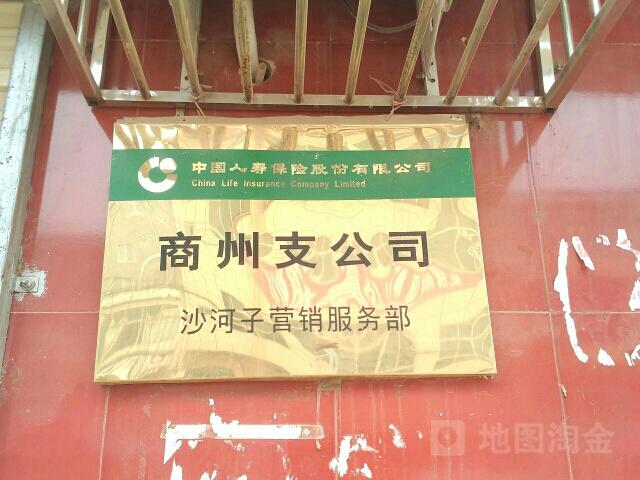 中国人寿(沙河子营销部)